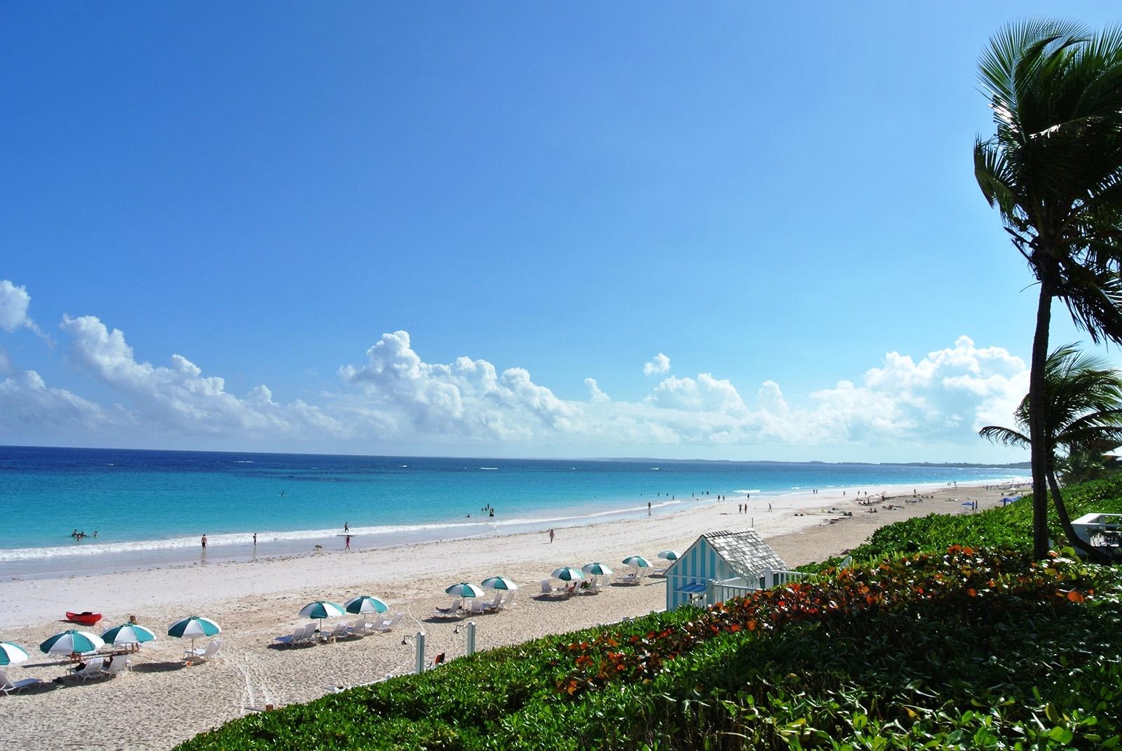 Розовый пляж харбор на багамах